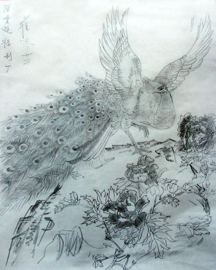 海贼王手绘铅笔画